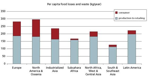 Food Loss Graph