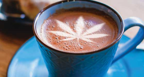 Cannabis Edibles Shake Up the Food Industry